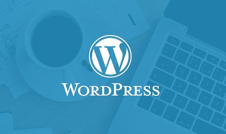 WordPress İnternet Sitesi Kurmak